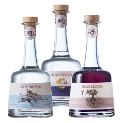 Above & Beyond Mixed Case Gin